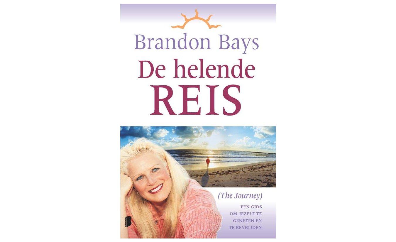 De helende reis - Brandon Bays